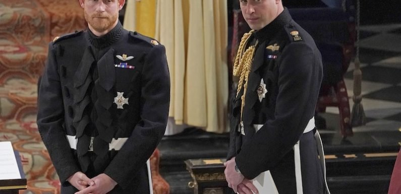 Did Playing Big Brother Ruin Prince William's Relationship with Prince Harry?