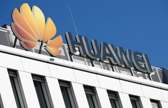 EU must assess Huawei risk despite lack of evidence: EU digital chief