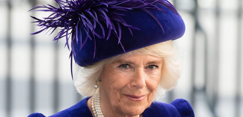 Why Camilla Parker Bowles' Parents Didn't Want Her to Marry Prince Charles