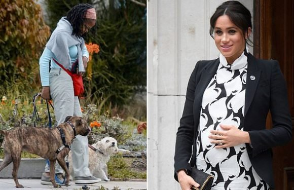 Meghan's mother 'has hired a house sitter and dog walker in LA'