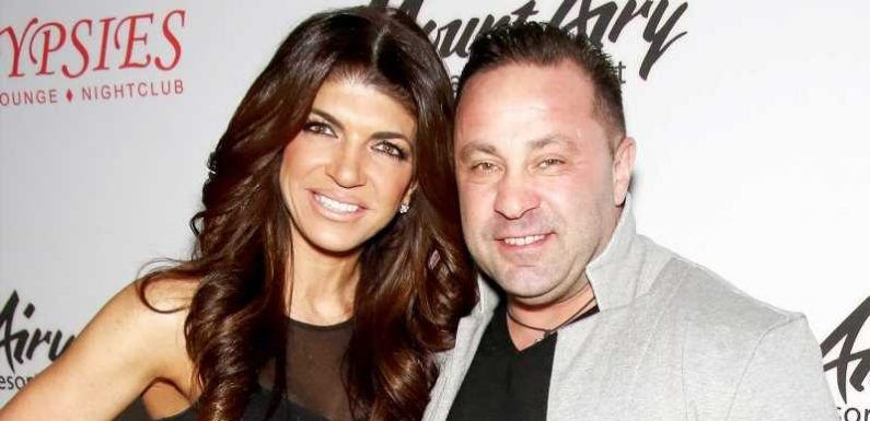 Throwback! Teresa Giudice Shares Family Photo With Joe After Appeal Denial