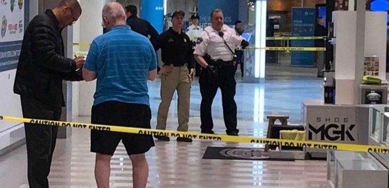 Man who threw 5-year-old from Mall of America balcony was 'looking to kill': Police