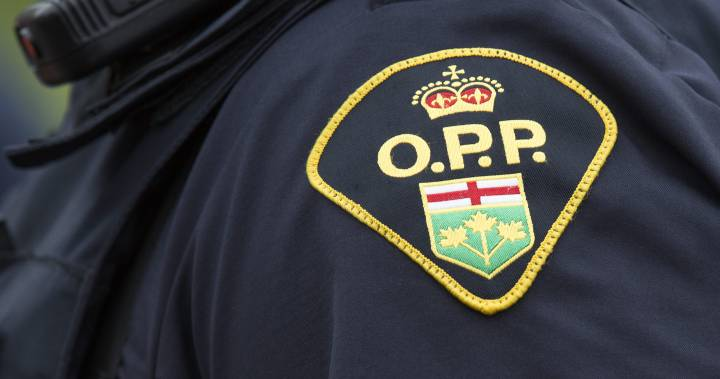 Essex OPP charge woman with stealing cash, collection plate from Leamington church