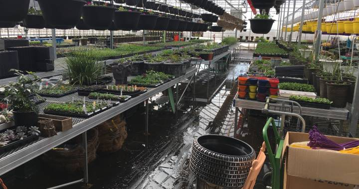 IN PHOTOS: Spring runoff floods Morinville greenhouse