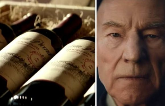 Star Trek Picard trailer: Why is Jean-Luc Picard in a vineyard?