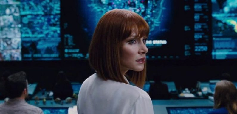 Bryce Dallas Howard Compares Filming 'The Mandalorian' to Being On The Holodeck