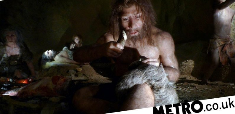 The 'dark heart' of human DNA contains mysterious Neanderthal genes