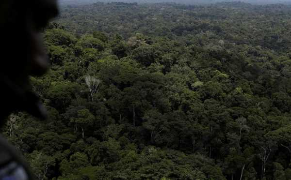 Brazil will not change Amazon fund without asking donors: development bank BNDES