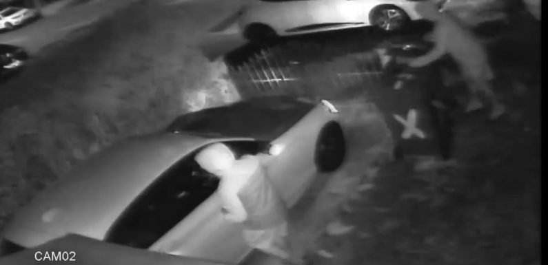 Thieves steal BMW for second time in six days despite owner's new barricades