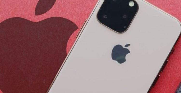 New iPhone 11 release – Apple fans get a very good look at what may launch soon