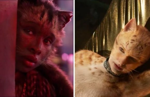 Cats movie release date, cast, plot: Everything we know about live action Cats movie