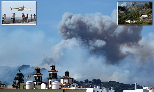 Wildfire sweeps across Gran Canaria as 4,000 people told to evacuate