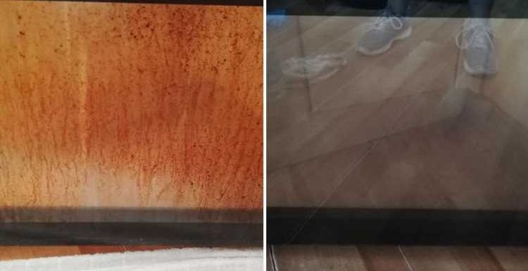 Woman gets her filthy oven door sparkling thanks to £3 cleaner from Tesco