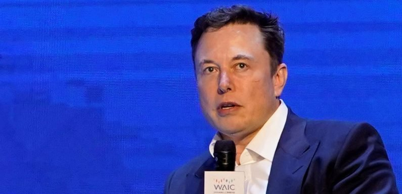 Elon Mask warns 'army of social media bots' will be first sign of robot uprising