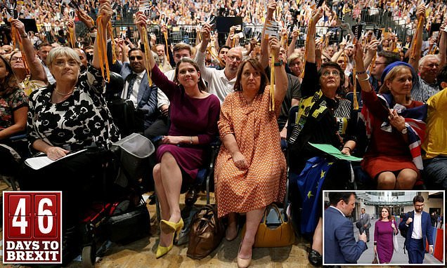 Liberal Democrats vote to STOP Brexit if they win the next election