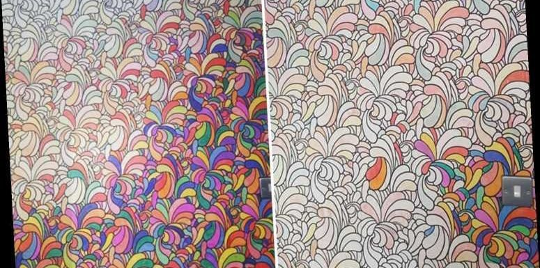 Woman raves about £25 Amazon wallpaper you can colour in – and it's perfect for messy kids – The Sun