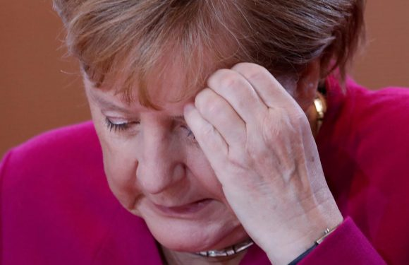 Germany's SPD to pick leader to decide fate of Merkel coalition