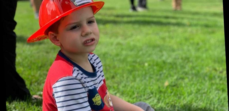 Michigan Boy, 4, Killed by Pit Bull as Mom Tries to Save Him By Stabbing Dog