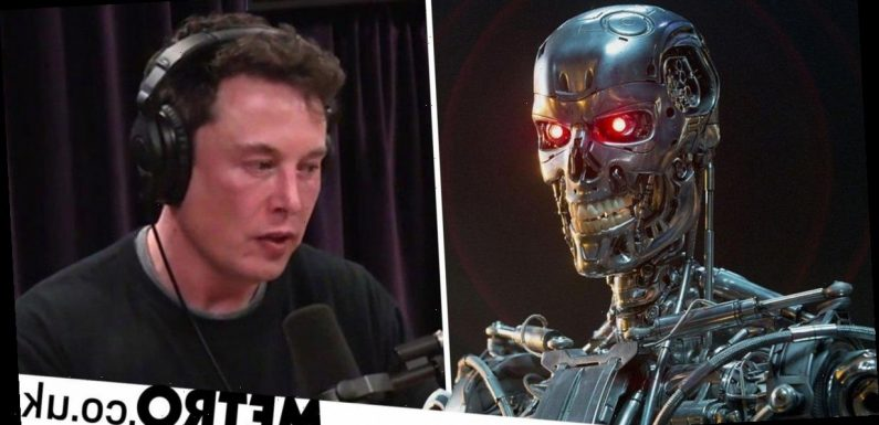 Elon Musk is wrong about the AI apocalypse, China tech boss claims