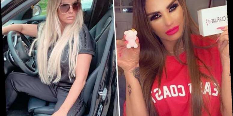 Katie Price fans baffled as she flogs car air freshener despite being banned from driving