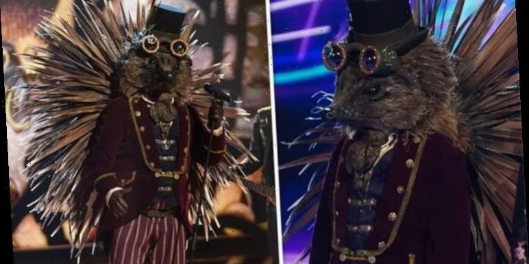The Masked Singer: Hedgehog's identity exposed as fans spot hidden clue 'It has to be!'