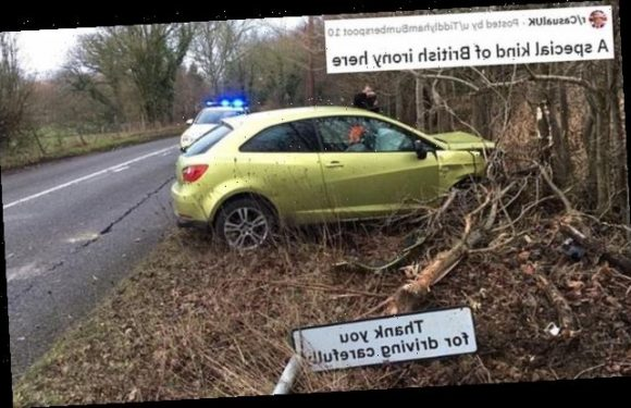 Car crashes into 'thank you for driving carefully' sign