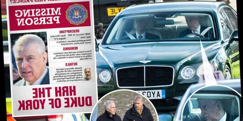 Met Police may re-open investigation into Prince Andrew's paedo pal Jeffrey Epstein – The Sun