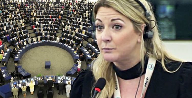 Brexit Party MEP Alexandra Phillips rages at 'bonkers' EU's 'astonishing' future vision