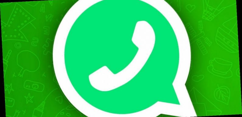 WhatsApp share some big news that proves it's miles ahead of the competition