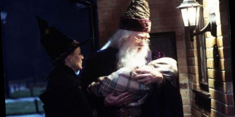 Harry Potter theory: Why The Boy Who Lived was sent to The Dursleys, NOT his grandparents