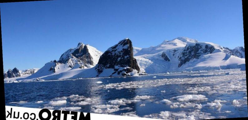 Antarctica hits record high heat as it goes above 20°C for first time in history