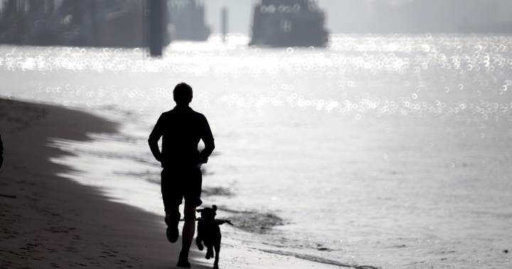 Half of runners hate running, survey finds