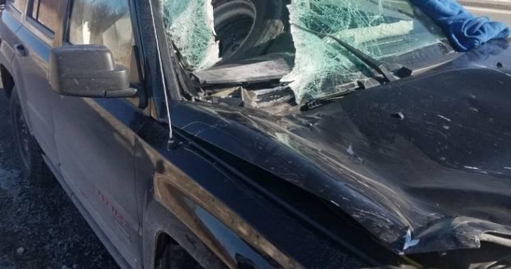 Loose tractor-trailer tire crashes into Jeep windshield on Hwy. 7 east of Peterborough: OPP