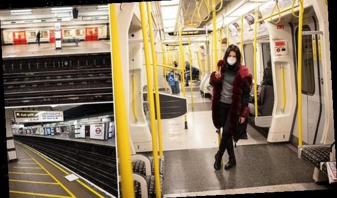 Tube journeys fall 70% as Britons work from home and avoid transport