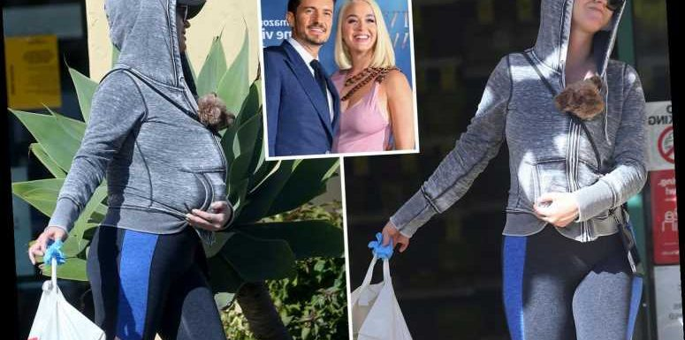 Katy Perry covers up pregnancy bump with her dog as she shops with surgical gloves during virus lockdown – The Sun