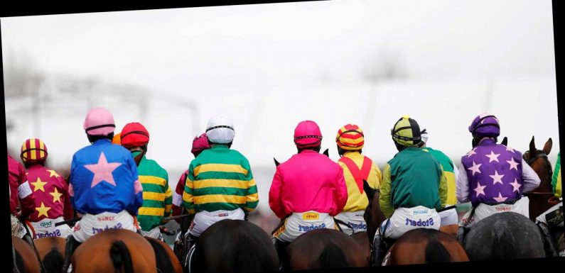 Cheltenham Festival tips: Grand Annual trends – we help you find the winner of the race live on ITV at 4.50pm today
