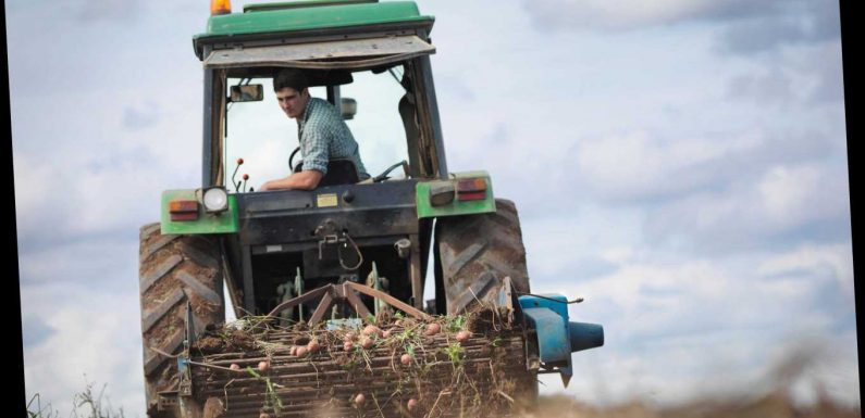 Britain doesn't need farmers, top Government adviser says in leaked emails