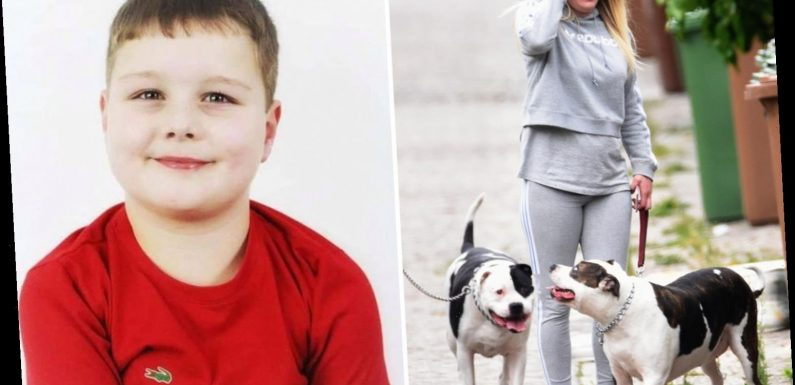 Bulldog owner is charged by cops after boy, 9, mauled to death at holiday park