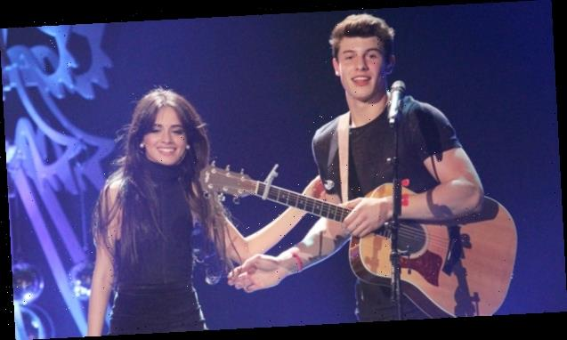 Camila Cabello Reveals Shawn Mendes Is Teaching Her How To Play Guitar & She's Teaching Him Spanish