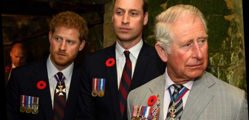 Prince Charles called Prince William and Prince Harry after coronavirus diagnosis