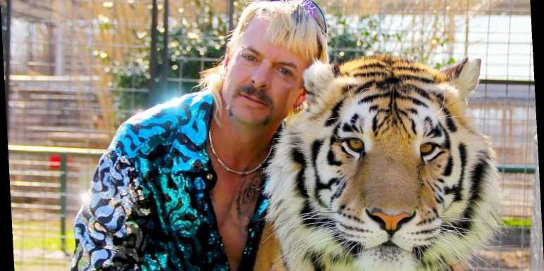 This Celebrity Clarifies His Relationship with Joe Exotic