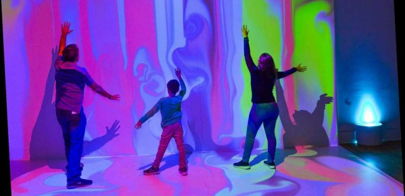 Inside the American Museum of Natural History's colorful new exhibit