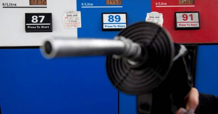 Cheap gas, opportunities to invest: the good news for Winnipeggers on a bad day at the markets
