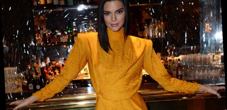 'Keeping Up With the Kardashian' Fans Have Problems With Kendall Jenner