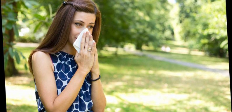 When is tree pollen season in the UK and what time of day has the highest pollen count? – The Sun