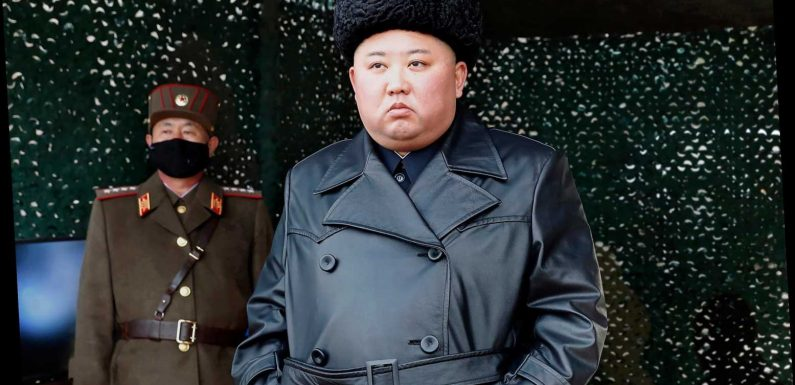 Impossible to know if Kim Jong-un is dead or alive as even his inner circle being kept in the dark, ex-CIA spook claims