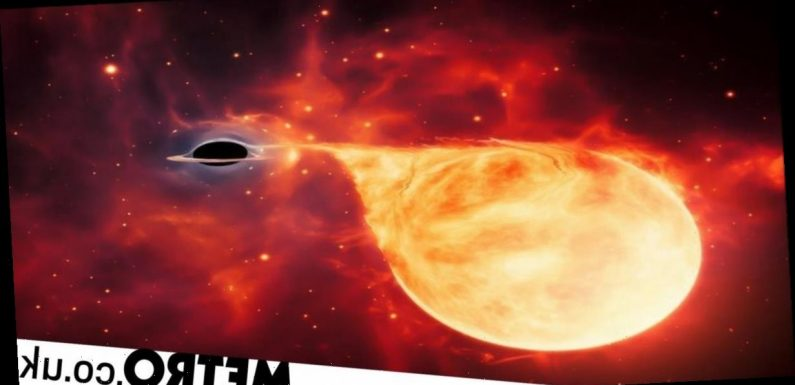 Elusive black hole 50,000 times the mass of our sun found devouring a star