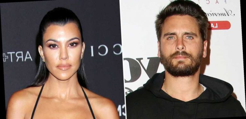 Scott Disick, Kourtney Kardashian Have a 'Unique' and 'Supportive' Dynamic