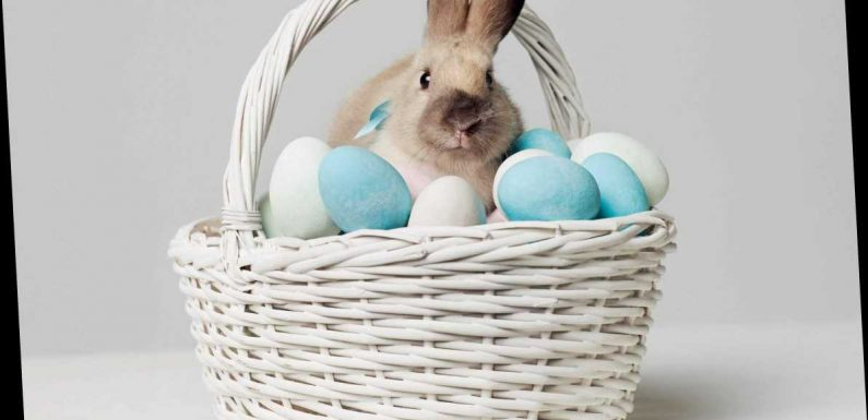 What is Easter? Here's why we celebrate it and what Easter eggs represent
