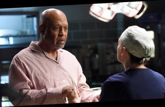 'Grey's' Finale: James Pickens Jr. Opens Up About Webber's Fate
